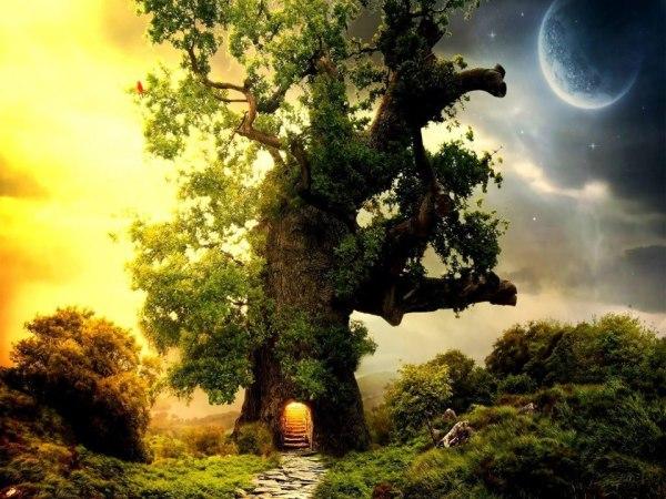 copacul