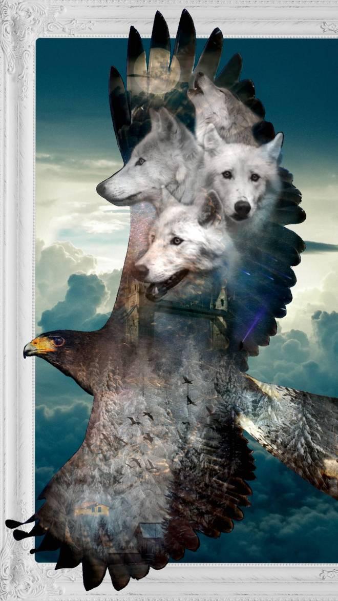 Epic_Eagle_and_Wolf-3bd9eb5a-6e80-43e3-880b-fc3b8d9fdac6