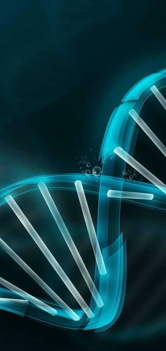DNA-fbb98d87-601c-4507-a5a6-cb6d886fa898